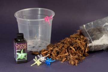 Orchid Repotting Kit - Everything needed to repot an orchid.