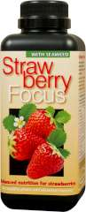 Strawberry Focus - Balanced nutrition for strawberries in pots and in the ground.